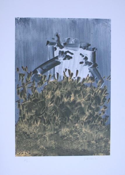 0004 Giuseppe Ferrari, litografia
