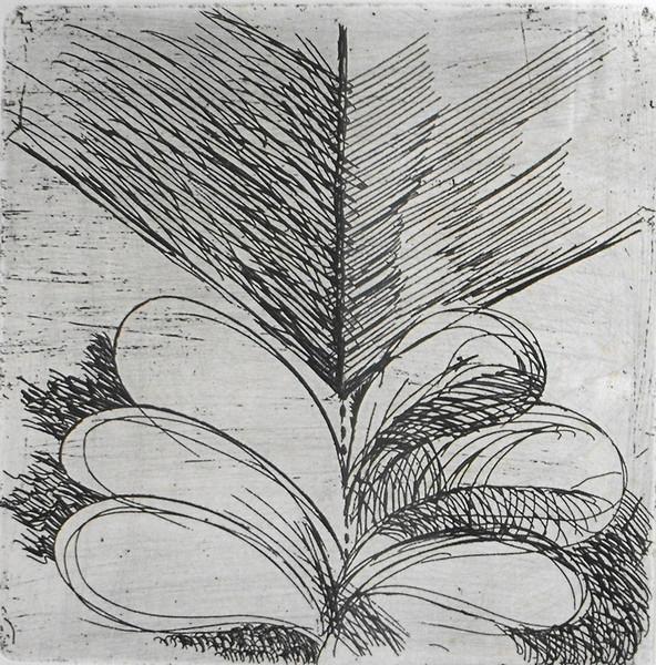 Enzo Bioli, 1968, incisione 19-25